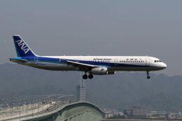 hiroki_h2さんが、関西国際空港で撮影した全日空 A321-131の航空フォト(飛行機 写真・画像)