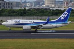 Soutaさんが、伊丹空港で撮影した全日空 737-781の航空フォト(飛行機 写真・画像)