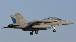 オキシドールさんが、岩国空港で撮影したアメリカ海軍 F/A-18F Super Hornetの航空フォト(飛行機 写真・画像)