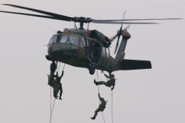 木人さんが、木更津飛行場で撮影した陸上自衛隊 UH-60JAの航空フォト(飛行機 写真・画像)
