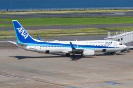 航空フォト:JA74AN 全日空 737-800