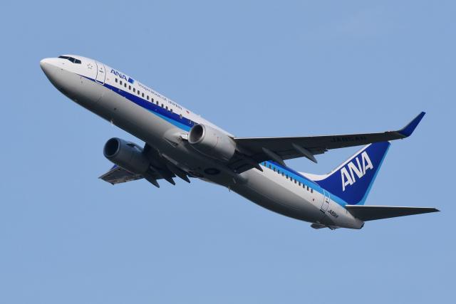 航空フォト:JA85AN 全日空 737-800