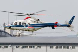 A.Tさんが、八尾空港で撮影した中日本航空 430の航空フォト(飛行機 写真・画像)