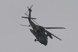 木人さんが、館山航空基地で撮影した陸上自衛隊 UH-60JAの航空フォト(飛行機 写真・画像)