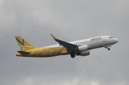 m_aereo_iさんが、成田国際空港で撮影したピーチ A320-214の航空フォト(飛行機 写真・画像)