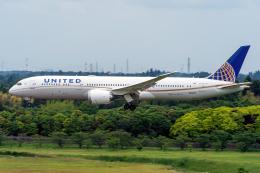 K.Sさんが、成田国際空港で撮影したユナイテッド航空 787-9の航空フォト(飛行機 写真・画像)