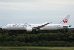 MOHICANさんが、成田国際空港で撮影した日本航空 787-9の航空フォト(飛行機 写真・画像)