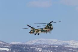 じーなの防人さんが、八雲分屯基地で撮影した航空自衛隊 CH-47J/LRの航空フォト(飛行機 写真・画像)