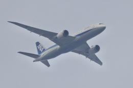 mahiちゃんさんが、埼玉県和光市で撮影した全日空 787-8 Dreamlinerの航空フォト(飛行機 写真・画像)
