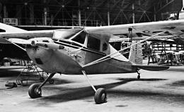 Y.Todaさんが、調布飛行場で撮影した日本飛行連盟 140の航空フォト(飛行機 写真・画像)