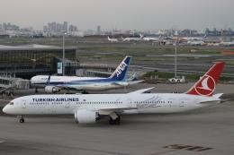 パピヨンさんが、羽田空港で撮影したターキッシュ・エアラインズ 787-9の航空フォト(飛行機 写真・画像)