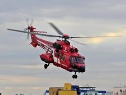 kaeru6006さんが、東京ヘリポートで撮影した東京消防庁航空隊 AS332L1の航空フォト(飛行機 写真・画像)