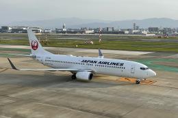 M.airphotoさんが、福岡空港で撮影した日本航空 737-846の航空フォト(飛行機 写真・画像)