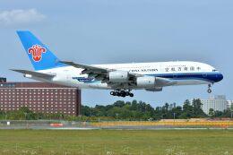 サンドバンクさんが、成田国際空港で撮影した中国南方航空 A380-841の航空フォト(飛行機 写真・画像)