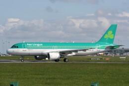 NIKEさんが、ダブリン空港で撮影したエア・リンガス A320-214の航空フォト(飛行機 写真・画像)