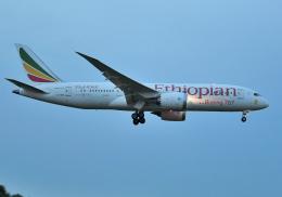 雲霧さんが、成田国際空港で撮影したエチオピア航空 787-8 Dreamlinerの航空フォト(飛行機 写真・画像)