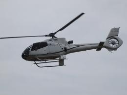 FT51ANさんが、東京ヘリポートで撮影したオートパンサー EC130B4の航空フォト(飛行機 写真・画像)