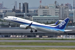 qooさんが、羽田空港で撮影した全日空 737-881の航空フォト(飛行機 写真・画像)