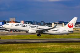 航空フォト:JA306J 日本航空 737-800