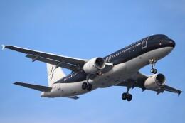 BOEING737MAX-8さんが、羽田空港で撮影したスターフライヤー A320-214の航空フォト(飛行機 写真・画像)
