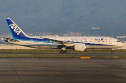 きんめいさんが、関西国際空港で撮影した全日空 787-8 Dreamlinerの航空フォト(飛行機 写真・画像)