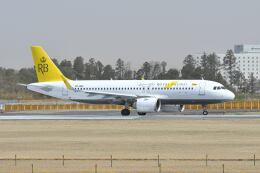 ポン太さんが、成田国際空港で撮影したロイヤルブルネイ航空 A320-251Nの航空フォト(飛行機 写真・画像)
