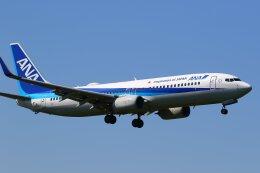 航空フォト:JA77AN 全日空 737-800