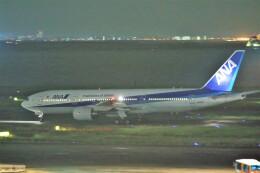 いんちゃんさんが、羽田空港で撮影した全日空 777-281の航空フォト(飛行機 写真・画像)