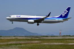 航空フォト:JA66AN 全日空 737-800