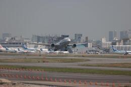 kou-1さんが、福岡空港で撮影した全日空 787-8 Dreamlinerの航空フォト(飛行機 写真・画像)