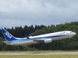 musaeru25cさんが、能登空港で撮影した全日空 737-881の航空フォト(飛行機 写真・画像)
