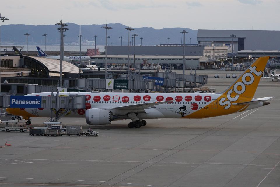 神宮寺ももさんのスクート (〜2017) Boeing 787-9 (9V-OJE) 航空フォト
