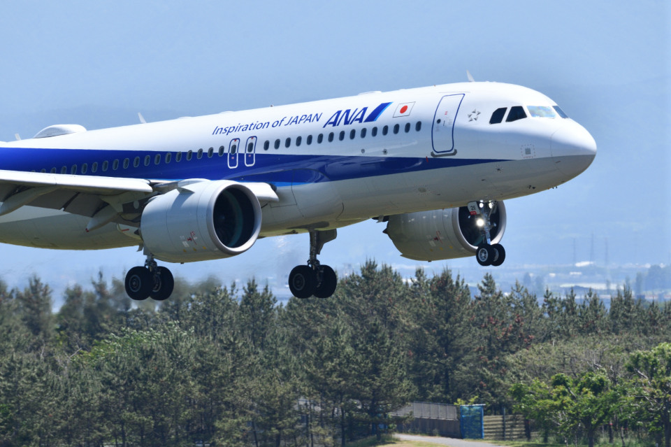 だだちゃ豆さんの全日空 Airbus A320neo (JA211A) 航空フォト