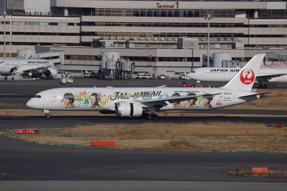 OS52さんの日本航空 Boeing 787-9 (JA873J) 航空フォト