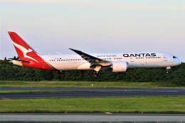みるぽんたさんが、成田国際空港で撮影したカンタス航空 787-9の航空フォト(飛行機 写真・画像)