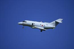 tsubameさんが、新田原基地で撮影した航空自衛隊 U-125A(Hawker 800)の航空フォト(飛行機 写真・画像)