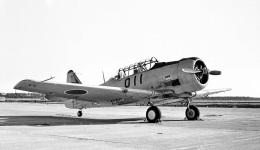 Y.Todaさんが、松島基地で撮影した航空自衛隊 T-6F Texanの航空フォト(飛行機 写真・画像)