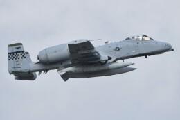 デルタおA330さんが、横田基地で撮影したアメリカ空軍 A-10C Thunderbolt IIの航空フォト(飛行機 写真・画像)