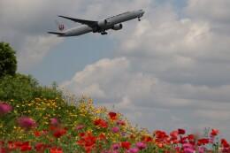 電車の運転士さんが、成田国際空港で撮影した日本航空 777-346/ERの航空フォト(飛行機 写真・画像)