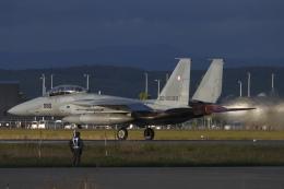 黄色の168さんが、千歳基地で撮影した航空自衛隊 F-15DJ Eagleの航空フォト(飛行機 写真・画像)