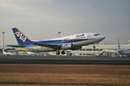 tsubameさんが、鹿児島空港で撮影したANAウイングス 737-54Kの航空フォト(飛行機 写真・画像)
