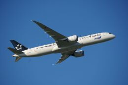 zibaさんが、成田国際空港で撮影した全日空 787-9の航空フォト(飛行機 写真・画像)