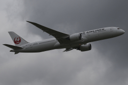 Sharp Fukudaさんが、成田国際空港で撮影した日本航空 787-9の航空フォト(飛行機 写真・画像)