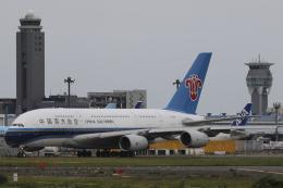 Sharp Fukudaさんが、成田国際空港で撮影した中国南方航空 A380-841の航空フォト(飛行機 写真・画像)