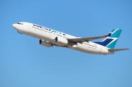 TA27さんが、フェニックス・スカイハーバー国際空港で撮影したウェストジェット 737-8CTの航空フォト(飛行機 写真・画像)