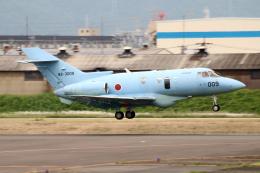 なごやんさんが、名古屋飛行場で撮影した航空自衛隊 U-125A(Hawker 800)の航空フォト(飛行機 写真・画像)