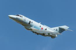 Y-Kenzoさんが、浜松基地で撮影した航空自衛隊 U-125A(Hawker 800)の航空フォト(飛行機 写真・画像)