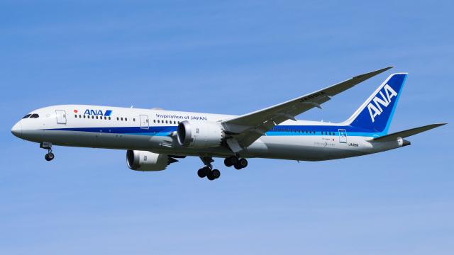 航空フォト:JA891A 全日空