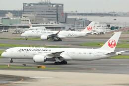cassiopeiaさんが、羽田空港で撮影した日本航空 787-9の航空フォト(飛行機 写真・画像)
