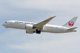 航空フォト:JA824J 日本航空 787-8 Dreamliner